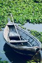 Traditional boat parked around a pond water Royalty Free Stock Photo