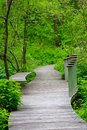 Beautiful Trail at a Wildflower Garden Royalty Free Stock Photo