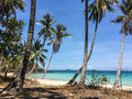 Beautiful tropical beach with coconut palm trees Royalty Free Stock Photo