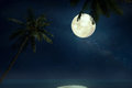 Beautiful tropical beach with Milky Way star in night skies, full moon Royalty Free Stock Photo