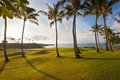 Beautiful tropical coastal golf hole at sunrise Royalty Free Stock Photography