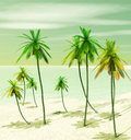 Beautiful tropical island Royalty Free Stock Photography