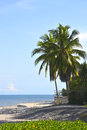 Beautiful tropical scene at corona beach in the pacific coast of panama Stock Image