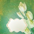Beautiful tulips against polka dots eps background and also includes Stock Photography