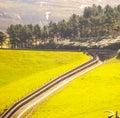 Beautiful valley scene from trespass walk Royalty Free Stock Photos