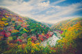 Beautiful valley with seasonal colorful trees and blue sky lands Royalty Free Stock Photo