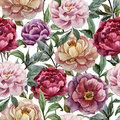 Beautiful vector watercolor pattern with peonies