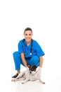 Beautiful veterinary assistant pet dog isolated white background Stock Image