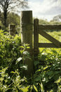 Beautiful vibrant English countryside landscape in idyllic sunshine conditions for hiking Royalty Free Stock Photo