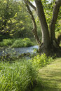 Beautiful vibrant English countryside river landscape with shall Royalty Free Stock Photo