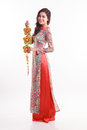 Beautiful Vietnamese woman wearing impression ao dai holding lucky decorate object Royalty Free Stock Photo