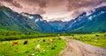 Beautiful view of alpine pasture upper svaneti georgia europe caucasus mountains Royalty Free Stock Photos