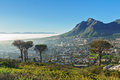 Beautiful view of Cape Town and Table Mountain Royalty Free Stock Photo