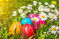 Beautiful view of colorful Easter eggs lying in the grass