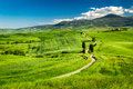 Beautiful view of the path between the fields in tuscany Royalty Free Stock Image