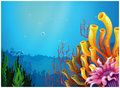 A beautiful view under the sea illustration of on white background Royalty Free Stock Photo