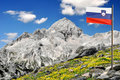 Beautiful views of Mount Triglav Stock Photography
