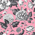 Beautiful vintage floral seamless pattern. Royalty Free Stock Photo