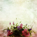 Beautiful vintage flowers Stock Photography