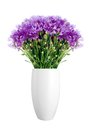 Beautiful violet flowers in vase isolated on white Royalty Free Stock Photo