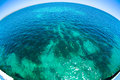 Beautiful water with nice sun sparkles on surface Royalty Free Stock Photo