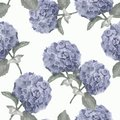 Beautiful watercolor floral seamless pattern with hydrangea flowers. Can be used as greeting card, wedding illustration.