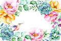 Beautiful watercolor frame border with roses,flower,foliage,succulent plant,branches,hummingbird.