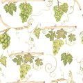 Beautiful watercolor hand drawn seamless green and yellow pattern with grapes branches and leaves. Isolated on white background.