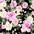 Beautiful watercolor pattern with flowers rose and blackberry. Royalty Free Stock Photo