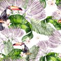 Beautiful watercolor seamless, tropical jungle floral pattern background with palm leaves, flower of roses, capers and  bird tukan Royalty Free Stock Photo