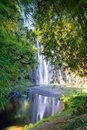 Beautiful waterfall in forest Stock Photography