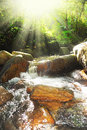 Beautiful waterfall in the forest on a sunny day Stock Image