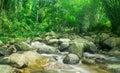 Beautiful waterfall through rock Royalty Free Stock Photo