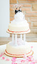 Beautiful wedding cake two grooms top surrounded rose petals Royalty Free Stock Image