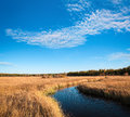 Beautiful wetland in autumn against a blue sky Royalty Free Stock Image