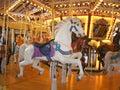 Beautiful White Carousel Horse Royalty Free Stock Photos