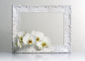Beautiful white frame Royalty Free Stock Photos