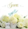 Beautiful White June Bride The...