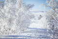 A Beautiful White Landscape Of...