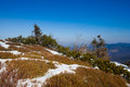 Beautiful winter in beskid mountains sunny photo taken beskidy mala babia gora babiogorski park narodowy Stock Image