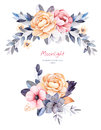 Beautiful winter collection with branches,cotton plants,flowers,succulent,colorful leaves. Royalty Free Stock Photo