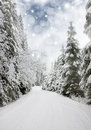 Beautiful winter landscape with snow covered trees road and blue sky Royalty Free Stock Photography