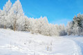 Beautiful winter landscape with trees hoarfrost covered Stock Photo