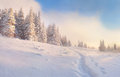 Beautiful winter morning Royalty Free Stock Photo