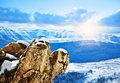 Beautiful winter mountains landscape Royalty Free Stock Photo