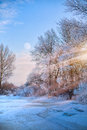 Beautiful winter nature view; winter landscape On A Hoar Frost Royalty Free Stock Photo