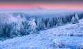 Beautiful winter sunrise in the mountain forest. Royalty Free Stock Photo