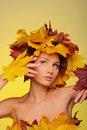 Beautiful woman with autumn leaves on yellow Royalty Free Stock Photography