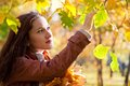 Beautiful woman in autumn park young enjoying the fall Stock Photos