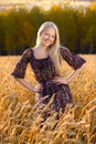 Beautiful woman in dress at the wheat field Stock Photo
